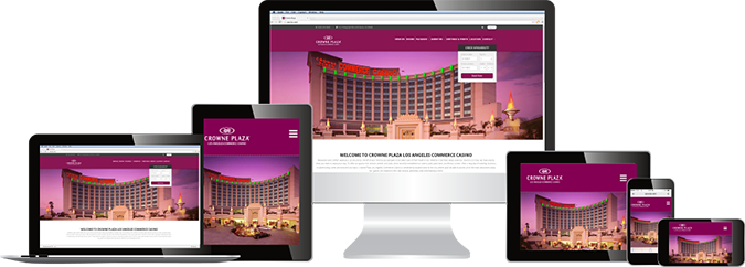 Conception site Professionnel en algérie